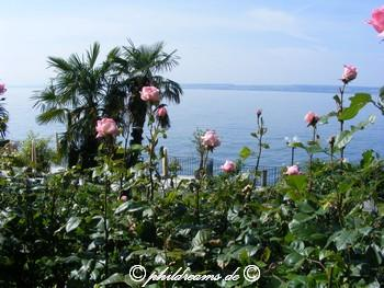 bodensee-002